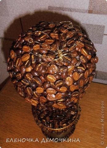 Я тоже не смогла удержаться и сделала свое кофейное деревце=) фото 2