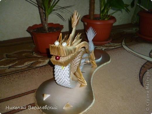Мой первый дракон фото 2