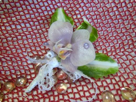 Вот такие три орхидеи я предлагаю сегодня слепить. фото 2