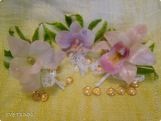 Вот такие три орхидеи я предлагаю сегодня слепить. фото 1