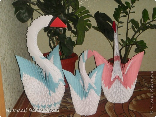 Семья лебедей фото 2