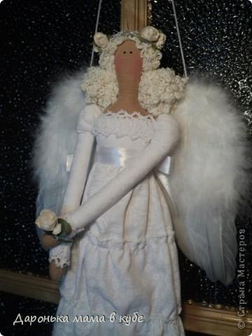 Белокрылые Красавицы фото 3