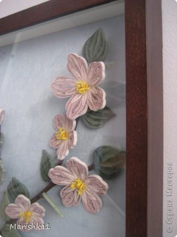 Пылая яркими цветами между корявыми ветвями, листвой задумчивой обвит, он тайну острую хранит. Глядит горящими глазами, раскрыв ресницы-лепестки. А на ветвях, вертя усами, блестят жуки-бронзовики. Нектар сосущая пчела колышет розовое ложе, и два сверкающих крыла на две больших слезы похожи. У шиповника розовый цвет и густы у шиповника ветки. Но цветов его в вазочках нет и в руках у людей они редки.                Юрий Галансков  Эта работа была сделана в подарок свекрови на День Матери. Надеюсь ей понравится. фото 3