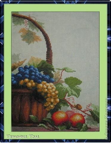 Кисть винограда фото 7