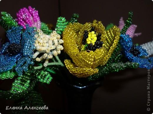 Вот такие яркие цветы фото 4