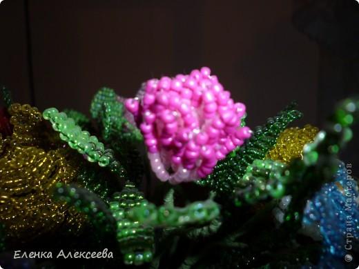Вот такие яркие цветы фото 6