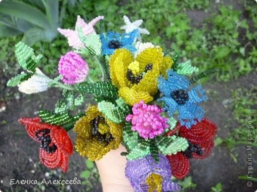 Вот такие яркие цветы фото 7