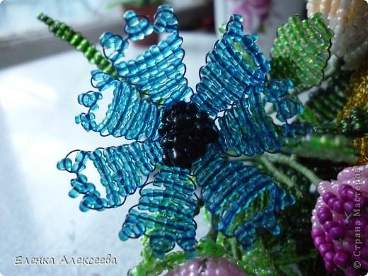 Вот такие яркие цветы фото 3