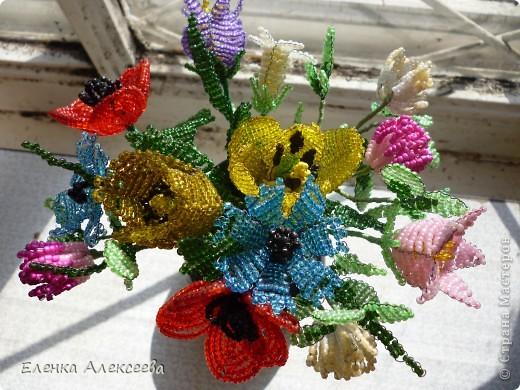 Вот такие яркие цветы фото 1