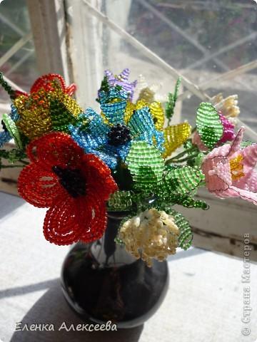 Вот такие яркие цветы фото 2