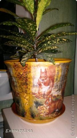 Комплект цветочный горшочек и бутылочка фото 2
