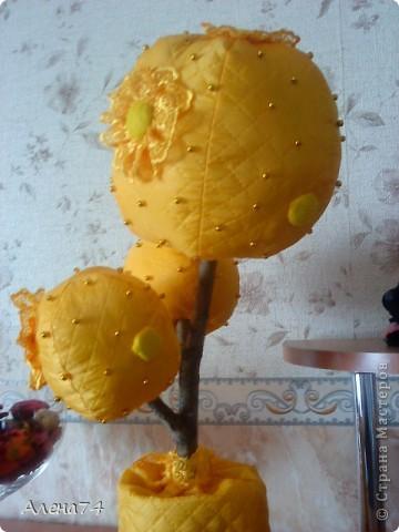 Топиарий желтый фото 3
