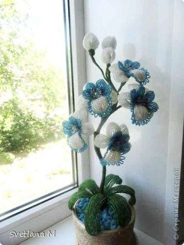 """Наконец закончила орхидею!!!Насмотрелась в нашей стране орхидей и решилась!!!Вдохновила меня работа Евгении""""Мысли"""",ее ирисы,начала делать ирисы и передумала,цвет неподходящий бисера и решилась на орхидею!!Вот что получилось.Я результатом очень довольна!!!Спасибо Евгении за вдохновение!!!Выставляю на Ваш суд !!! фото 18"""