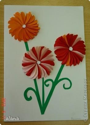 На сей раз открыточка с объемными цветами. Для начала продумываем цвет. Сложив полоску бумаги, вырезаем лепесток. Заготовив достаточное количество, складываем каждый лепесток пополам (вдоль). И отметив на бумаге центр цветка, начинаем приклеивать лепестки, смазывая клеем только половинку его. Следующий лепесток приклеиваем, чуть заслоняя первый и т.д. фото 2
