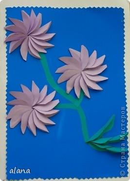 На сей раз открыточка с объемными цветами. Для начала продумываем цвет. Сложив полоску бумаги, вырезаем лепесток. Заготовив достаточное количество, складываем каждый лепесток пополам (вдоль). И отметив на бумаге центр цветка, начинаем приклеивать лепестки, смазывая клеем только половинку его. Следующий лепесток приклеиваем, чуть заслоняя первый и т.д. фото 4