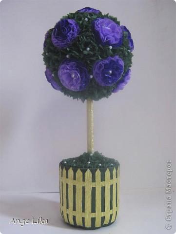 Подарок невестке в день рождения. Уж очень она хотела себе деревце... фото 1
