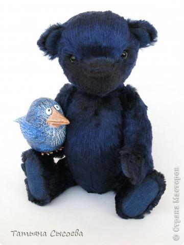 Когда-то у него было другое имя, но он подружился с синей птицей и теперь все зовут его  - Счастливчик фото 1