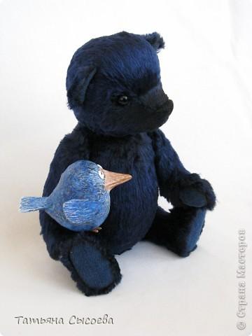 Когда-то у него было другое имя, но он подружился с синей птицей и теперь все зовут его  - Счастливчик фото 2