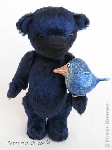Когда-то у него было другое имя, но он подружился с синей птицей и теперь все зовут его  - Счастливчик фото 4