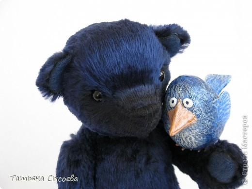 Когда-то у него было другое имя, но он подружился с синей птицей и теперь все зовут его  - Счастливчик фото 6