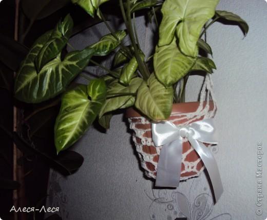 Наконец то сделала себе карандашницу и не осталось места для цветка, пришлось на скорую руку связать кашпо и повесить на стену. фото 1