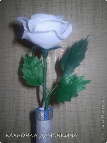 Это тоже подарок=) фото 4