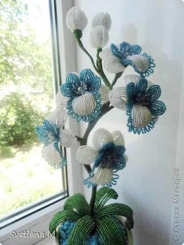 """Наконец закончила орхидею!!!Насмотрелась в нашей стране орхидей и решилась!!!Вдохновила меня работа Евгении""""Мысли"""",ее ирисы,начала делать ирисы и передумала,цвет неподходящий бисера и решилась на орхидею!!Вот что получилось.Я результатом очень довольна!!!Спасибо Евгении за вдохновение!!!Выставляю на Ваш суд !!! фото 1"""