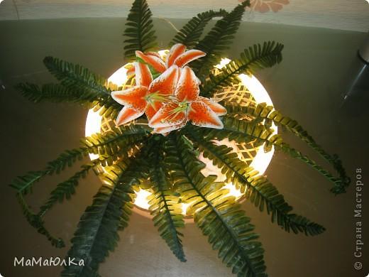 Добрый день! Вот такой светильник придумал мой муж.  Была у нас отдельно плетенка круглая, искусственный цветок и лампа дневного света от люстры.  фото 1