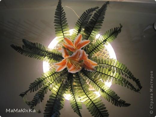 Добрый день! Вот такой светильник придумал мой муж.  Была у нас отдельно плетенка круглая, искусственный цветок и лампа дневного света от люстры.  фото 3