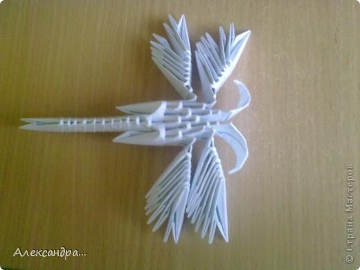 """Как-то раз было настроение у меня """"бумажное"""" и я занялась оригами :) Оригами заинтересовало модульное. Нашла замечательных стрекоз. Это была моя первая стрекоза. Видимо, крылья были собраны не очень удачно и впоследствии они закрутились. фото 2"""