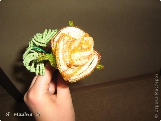 Это пустынная роза - роза Таиф)так мне шепнуло вдохновение) фото 3