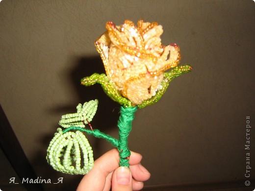 Это пустынная роза - роза Таиф)так мне шепнуло вдохновение) фото 4