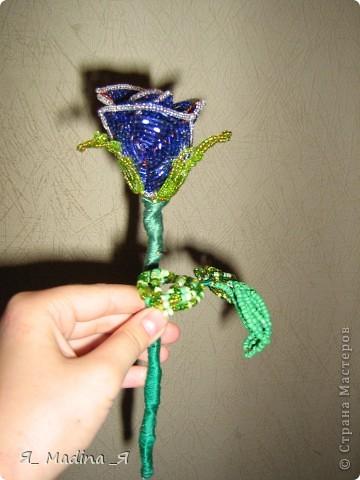 Это пустынная роза - роза Таиф)так мне шепнуло вдохновение) фото 5