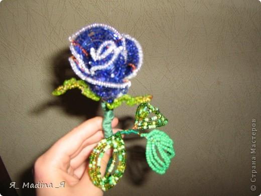 Это пустынная роза - роза Таиф)так мне шепнуло вдохновение) фото 7