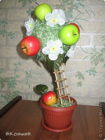 Вот такое маленькое, скромненькое деревце с яблоками. фото 1