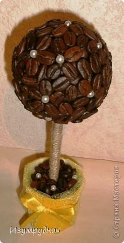 Привет всем! Попросили меня сделать мааленькое кофейное деревце - 20 см. Вот такое получилось) На мой взгляд очень солнечное, жизнерадостное. От него так и веет радостью)  фото 2