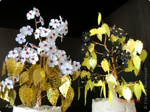 сочетание цветов необычное, но мне НРА фото 3