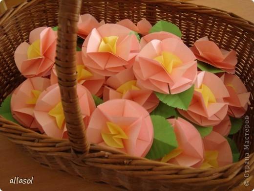 Второе воскресенье мая в Латвии - День матери.   Эта яблоня расцвела к празднику благодаря нашему кружку ОРИГАМИ  фото 5