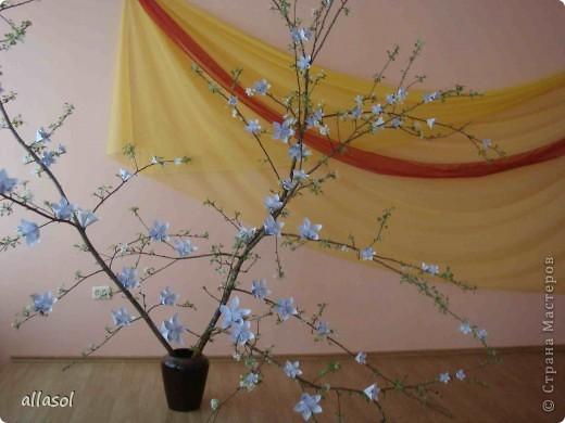 Второе воскресенье мая в Латвии - День матери.   Эта яблоня расцвела к празднику благодаря нашему кружку ОРИГАМИ  фото 3