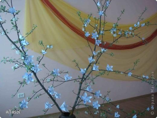 Второе воскресенье мая в Латвии - День матери.   Эта яблоня расцвела к празднику благодаря нашему кружку ОРИГАМИ  фото 2