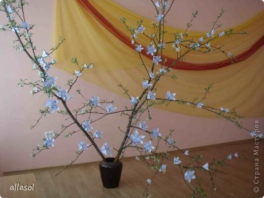 Второе воскресенье мая в Латвии - День матери.   Эта яблоня расцвела к празднику благодаря нашему кружку ОРИГАМИ  фото 1