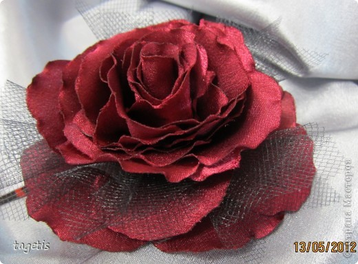 У меня опять расцвели розы фото 4