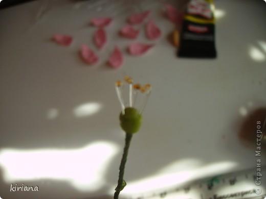Ви́шня мелкопи́льчатая, или Са́кура (лат. Prunus serrulata, яп. 桜 или яп. 櫻) — вид декоративных деревьев семейства Розовые. Сакурой также называют соцветия этих деревьев. Доброго всем дня, дорогие жители Страны! У меня под окошком со дня на день распуститься куст сакуры и, к сожалению, я этого события не увижу, потому что улетаю в отпуск (УРА!!!!) Но мне так захотелось сохранить эту красоту не только на фото, что слепилась вот такая веточка (надеюсь когда нибуть перерастет в полноценный бонсай). Хочу с Вами поделиться процессом создания красоты! Очень надеюсь, что не заскучаете! И так......  фото 8