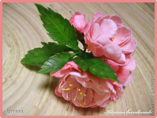 Ви́шня мелкопи́льчатая, или Са́кура (лат. Prunus serrulata, яп. 桜 или яп. 櫻) — вид декоративных деревьев семейства Розовые. Сакурой также называют соцветия этих деревьев. Доброго всем дня, дорогие жители Страны! У меня под окошком со дня на день распуститься куст сакуры и, к сожалению, я этого события не увижу, потому что улетаю в отпуск (УРА!!!!) Но мне так захотелось сохранить эту красоту не только на фото, что слепилась вот такая веточка (надеюсь когда нибуть перерастет в полноценный бонсай). Хочу с Вами поделиться процессом создания красоты! Очень надеюсь, что не заскучаете! И так......  фото 1