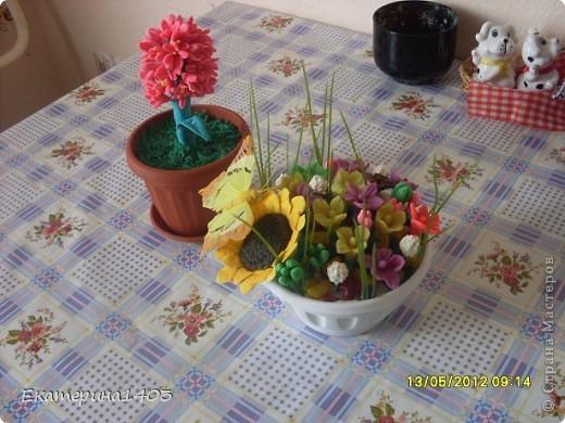 Вот мой цветочек. фото 5