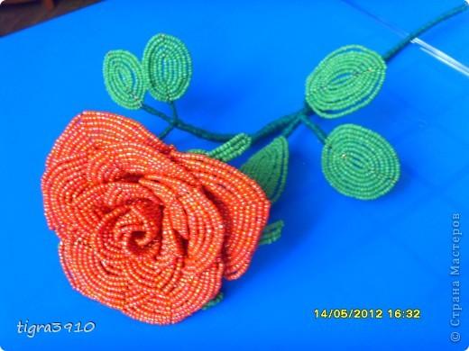 моя первая роза из бисера! фото 1