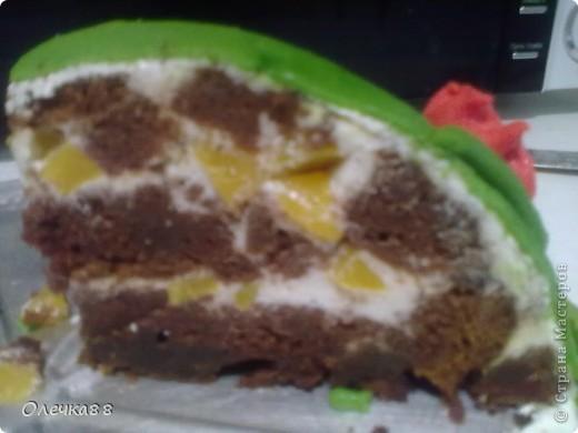 """Вот и мой второй мастичный тортик ко дню рождения моей дочурки. Делать его не собиралась. Поэтому он получился """"экстренным"""". Но Викуле очень понравился. фото 3"""