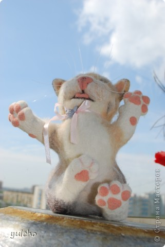Котя с большим носом фото 3