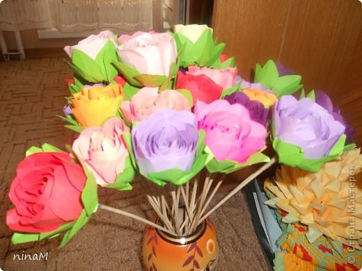 розы фото 7