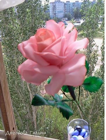 Привет всем!!!Вот и я осваиваю потихоньку искусство лепки.На этот раз я слепила розу,хочу сразу сказать,что эта роза получилась лучше всех предыдущих,наверно потому что лепила с натуры.Очень хотела добиться правельной формы бутона,ну вроде получилось-судить вам,дорогие рукодельницы! фото 1